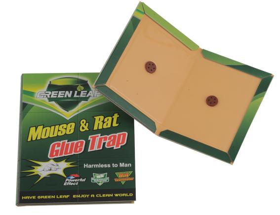 ברצינות מלכודות ספר דבק ללכידת עכברים וחולדות - בסמן UJ-71